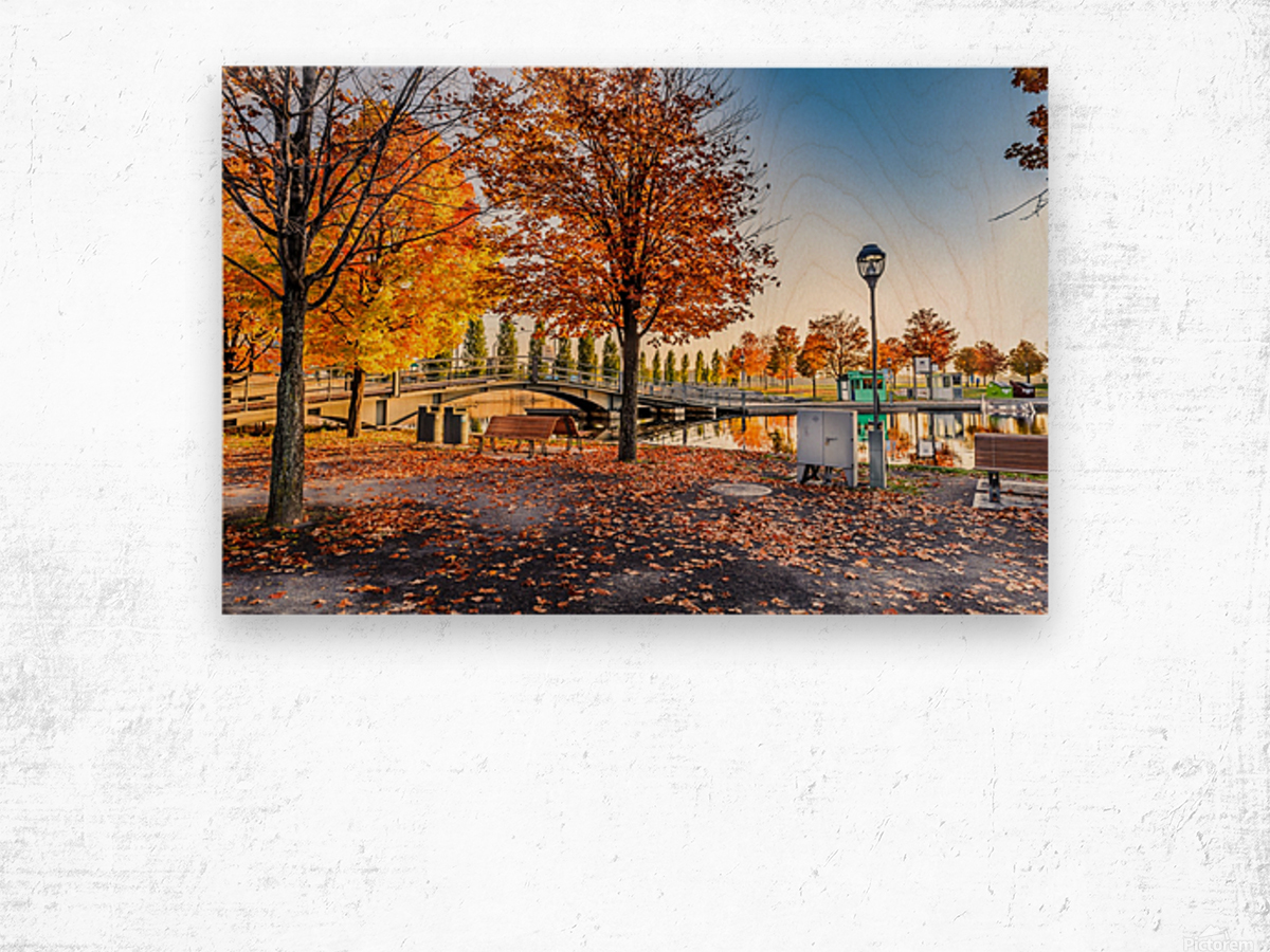 _TEL6354 Edit Wood print