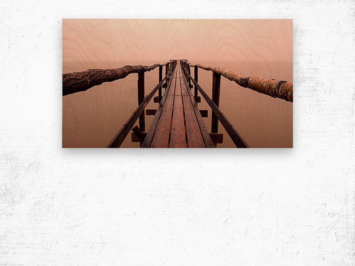 Enter The Lake Wood print