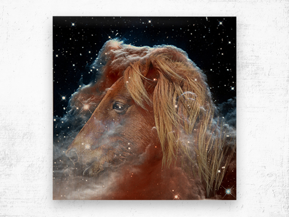 Horsehead Nebula with Horse Head in Space Wood print