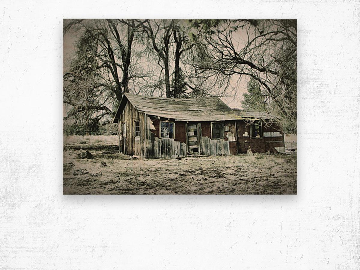Abandoned Homestead Wood print