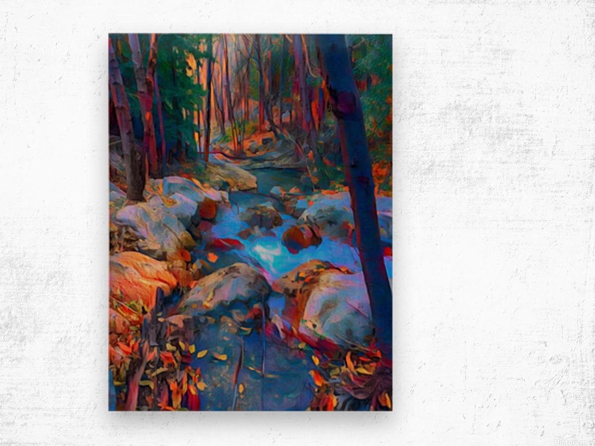 San Gabriel spring Wood print