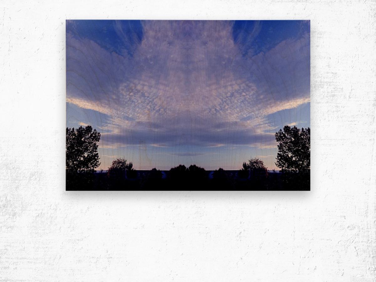 nube 44 Wood print