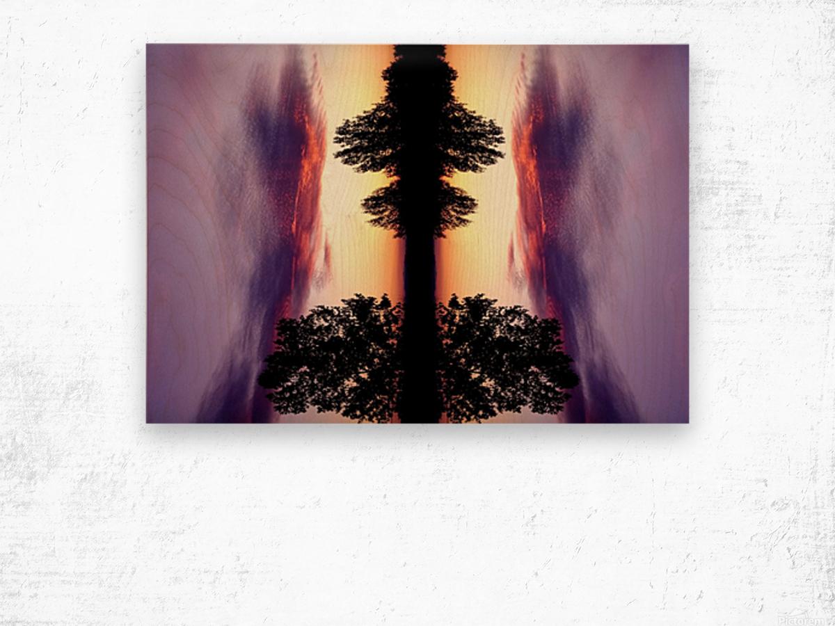 nube 47 Wood print