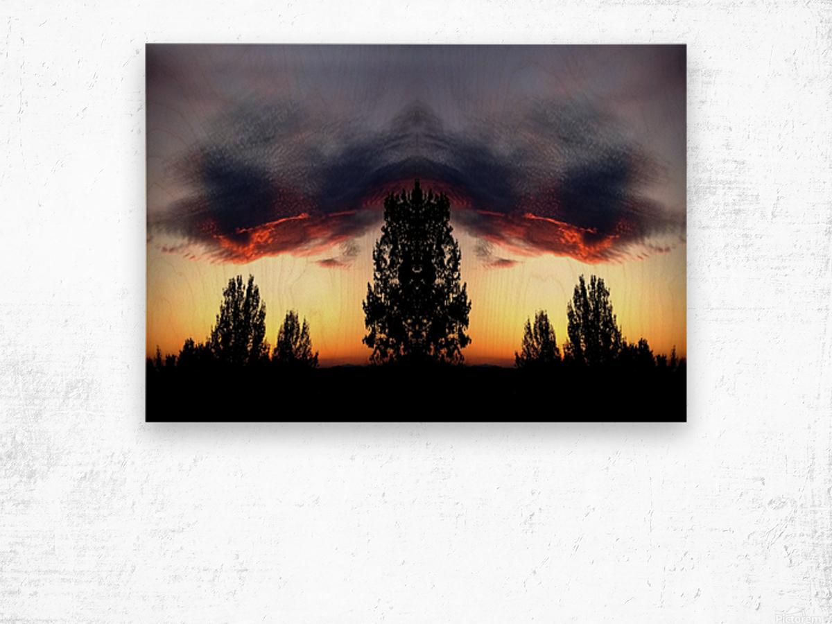 nube 49 Wood print