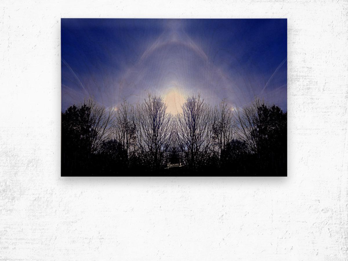 nube 55 Wood print