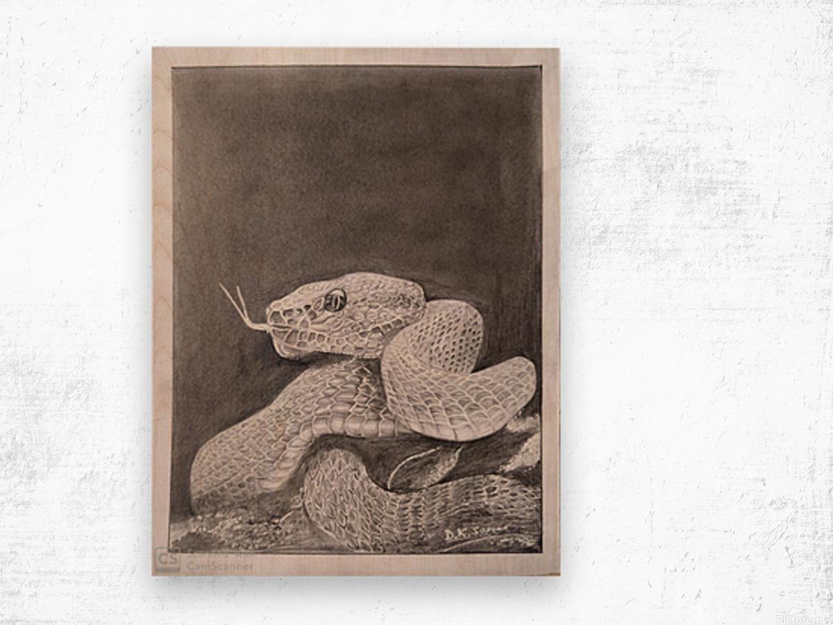 Snake_DKS Impression sur bois