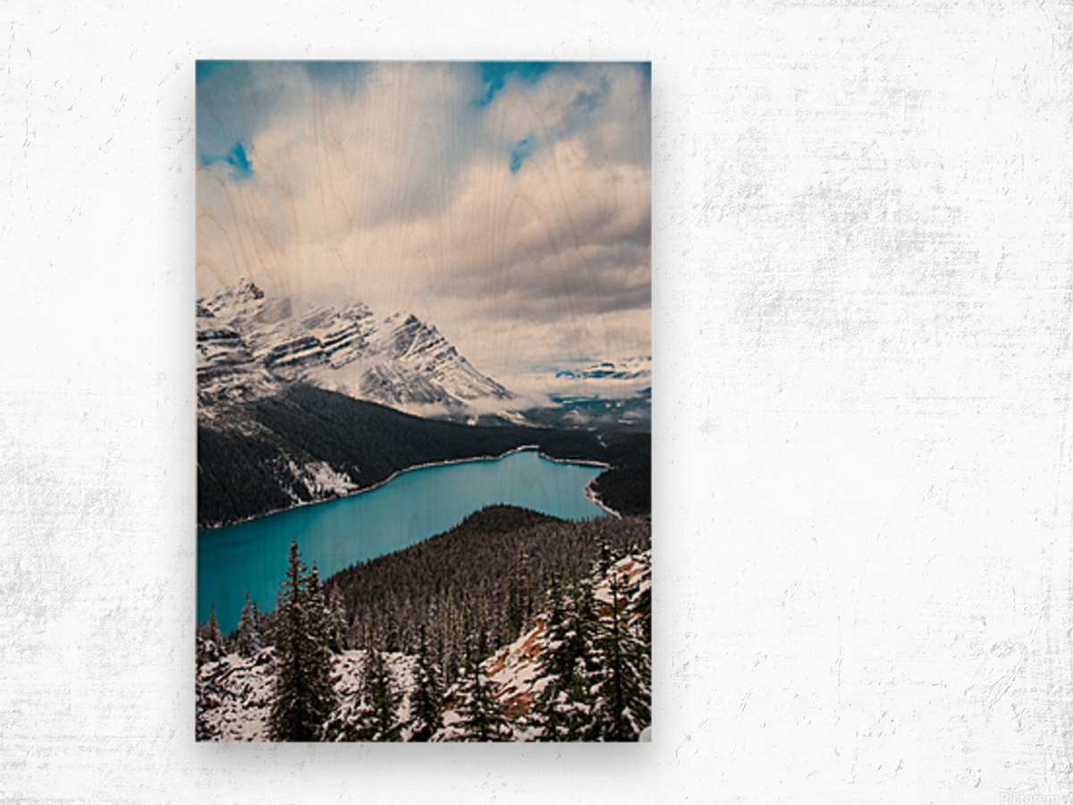 Wintry Peyto Lake Wood print