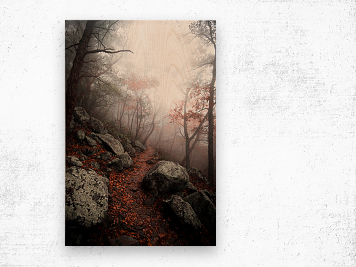 Moody Forest Wood print