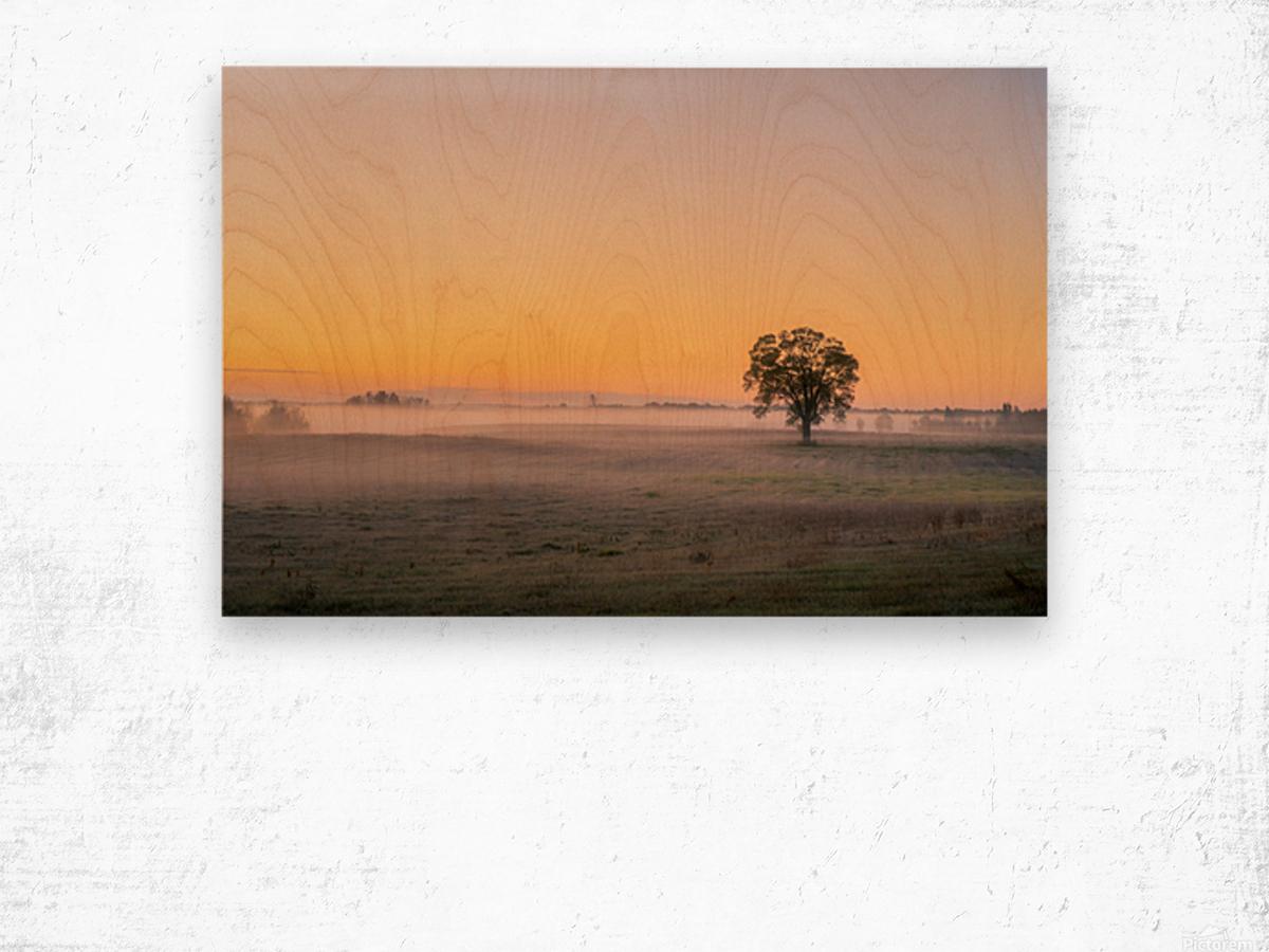 Moring Fog Wood print