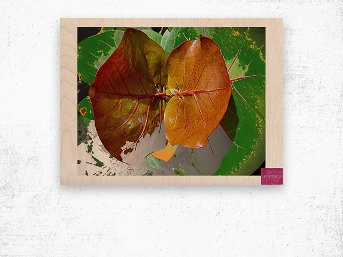 Tropical Tan Leaves Wood print