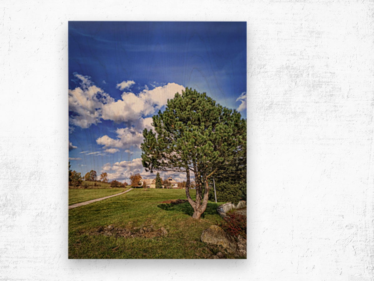 Tree and blue sky with clouds Wood print