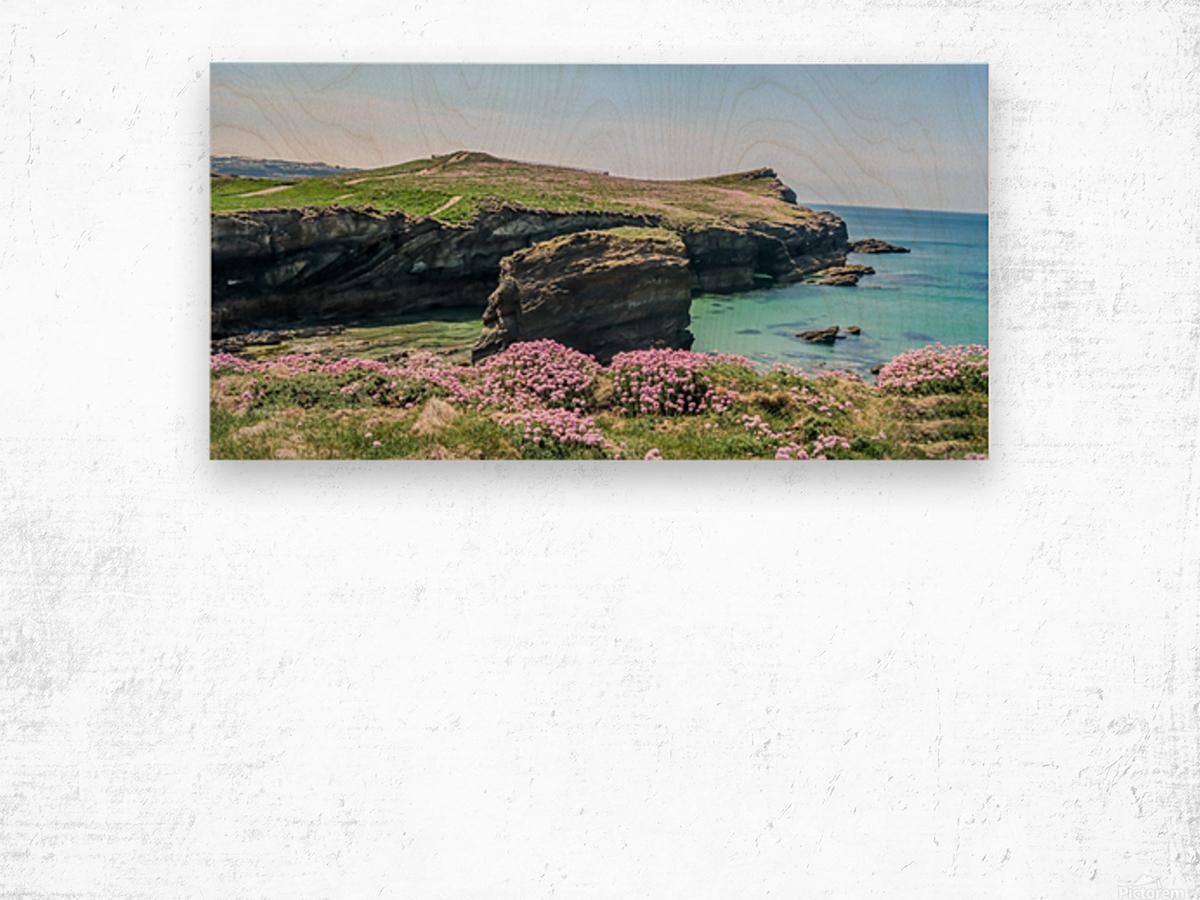 View of sea and rocks Wood print