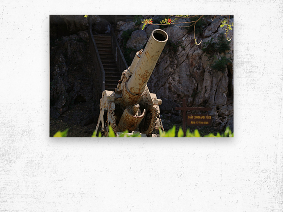 Old Japanese cannon  Wood print