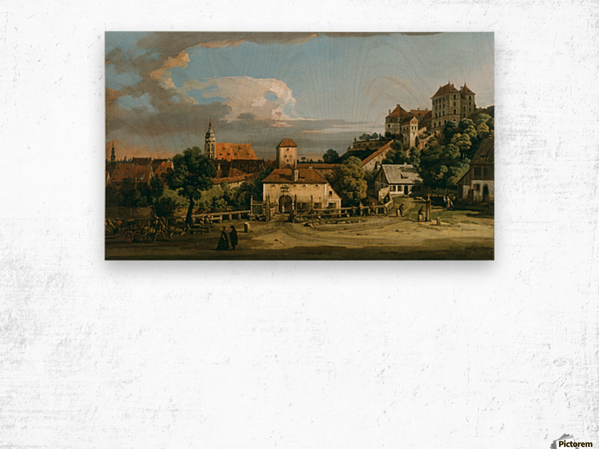 Pirna - The Obertor from the South Wood print