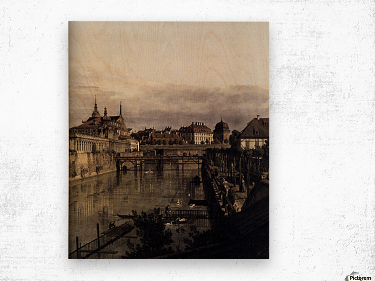 The Moat of the Zwinger in Dresden Wood print
