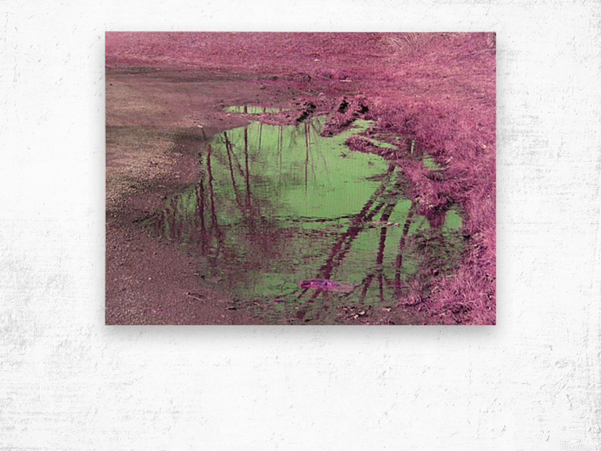 Value of a Puddle  Wood print
