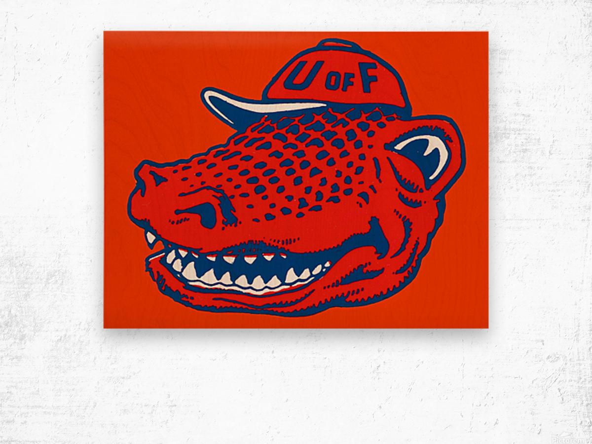 Vintage Florida Gators Wall Art Wood print