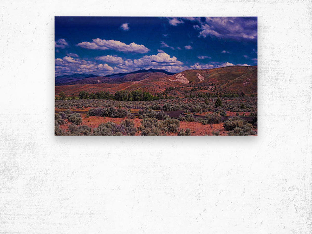 Painted Hills Wood print
