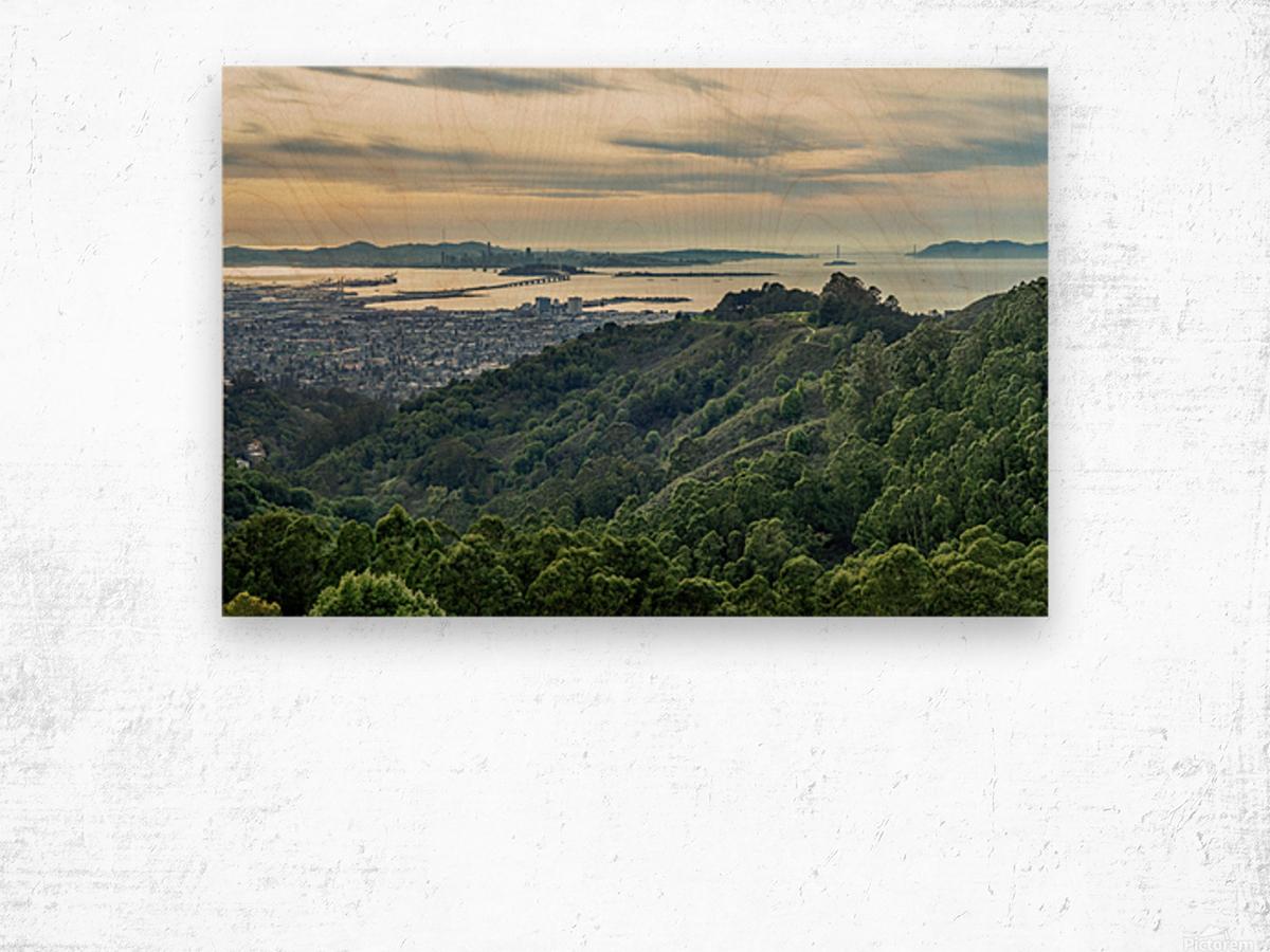 San Francisco Skyline From Berkeley  Wood print