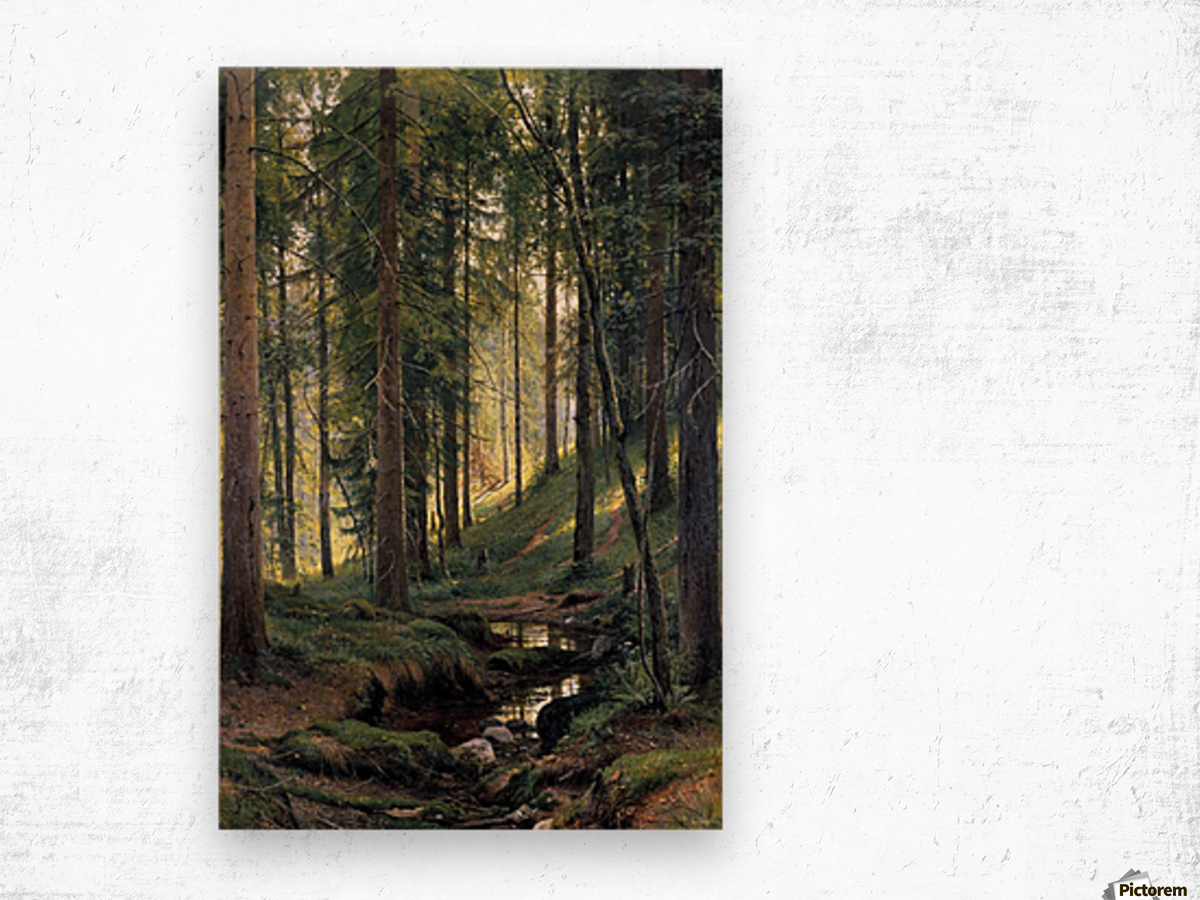 Stream by a forest slope Wood print