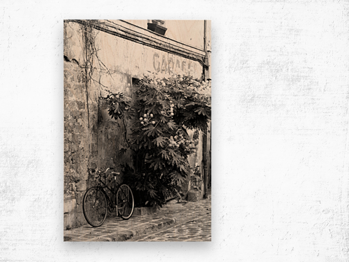 Bike in Passage Wood print