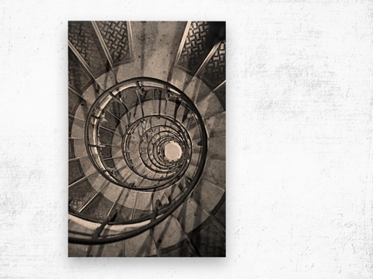 Escargot Wood print