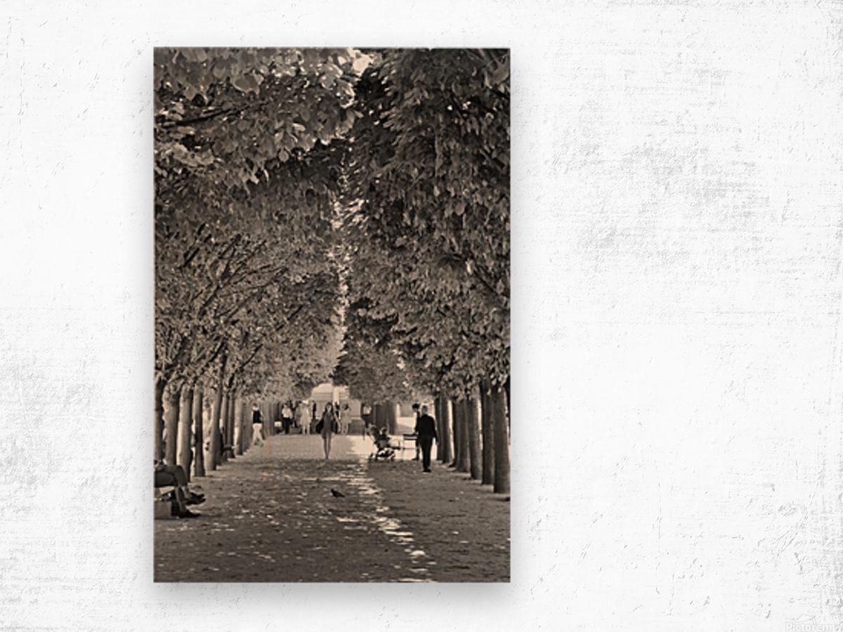 Arbre dalignement Wood print