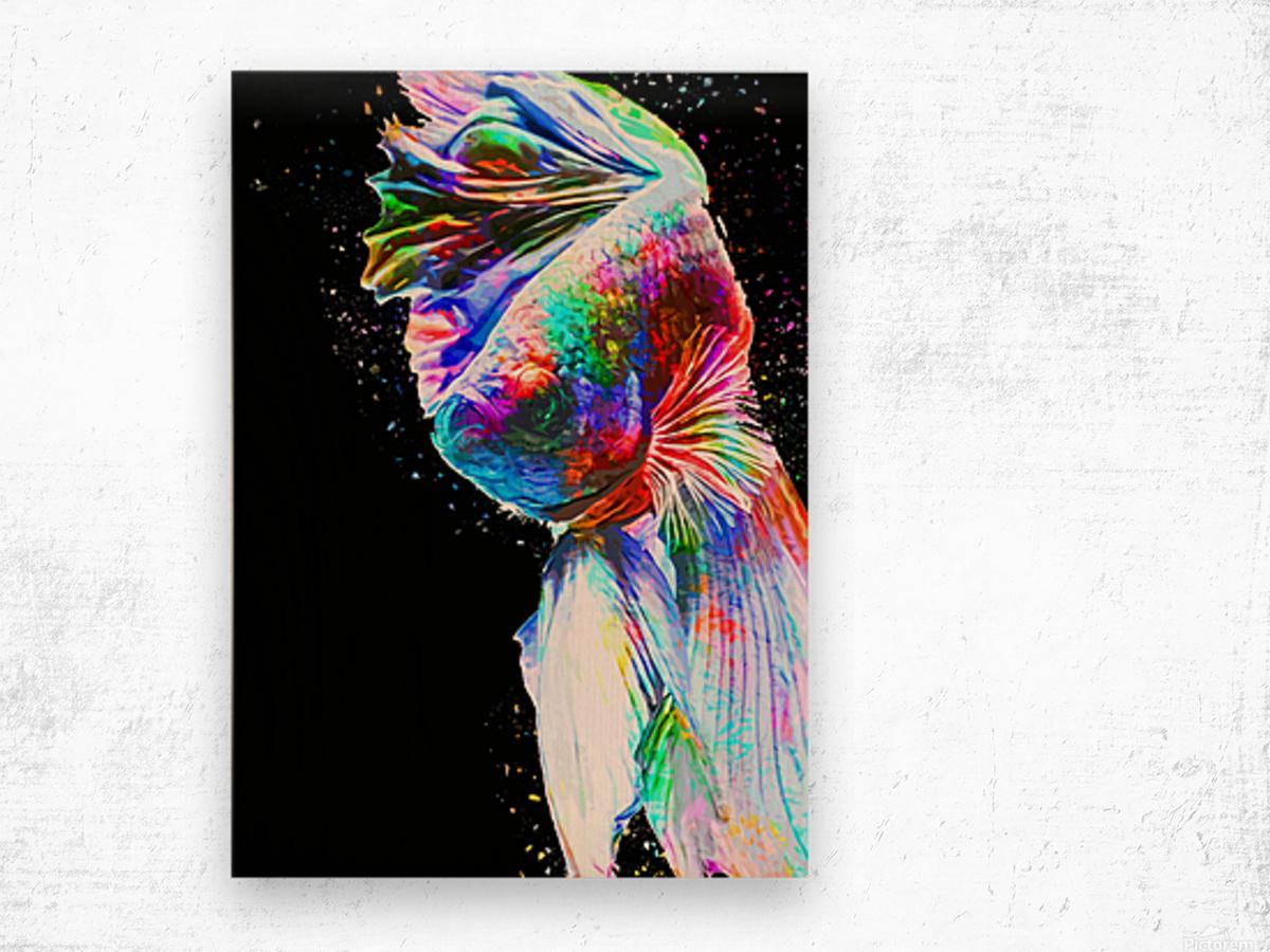 Betta Fish Lover 24 Wood print