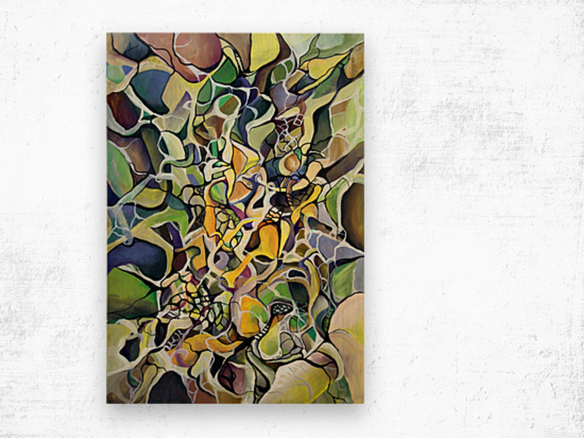 Chaos Theory in Interlacing Style  Wood print