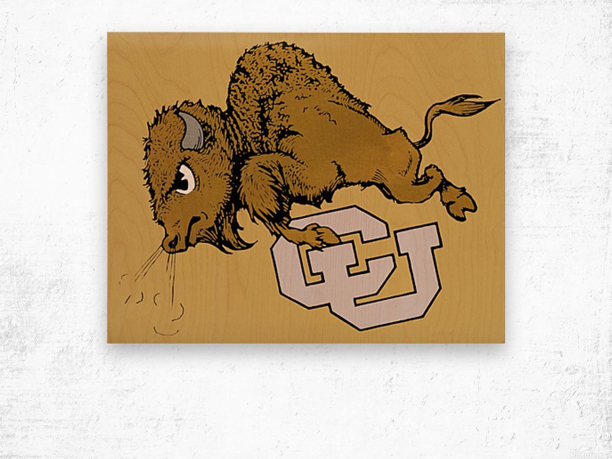 vintage cu colorado buffaloes art Wood print