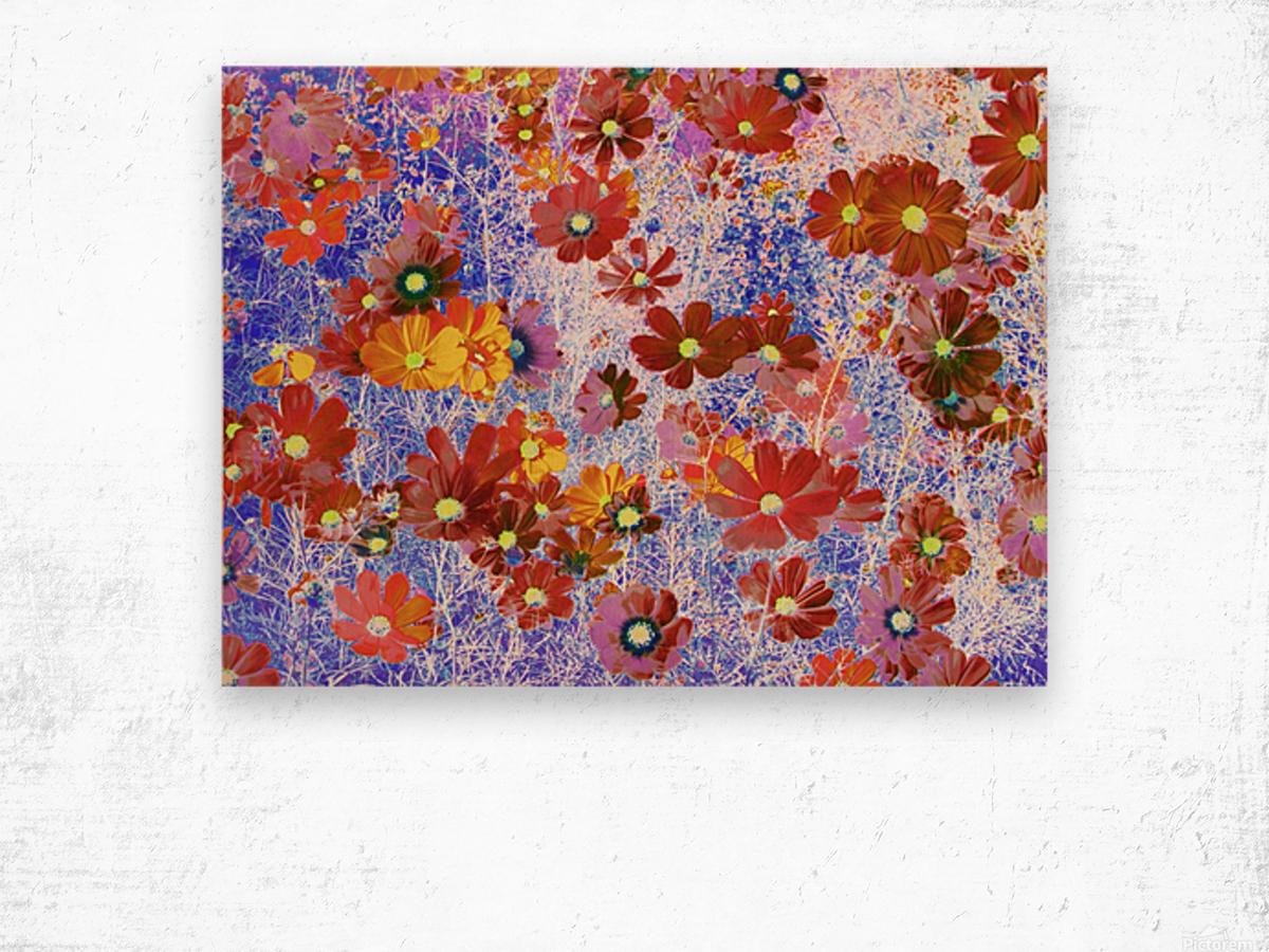Cosmos Flowers Brown Wood print
