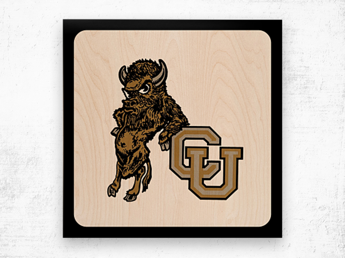 vintage college mascots colorado buffalo art Wood print