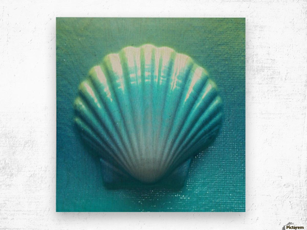 Blue Shell Wood print
