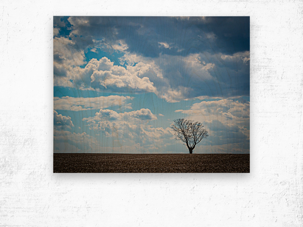 Alone With My Thoughts Wood print
