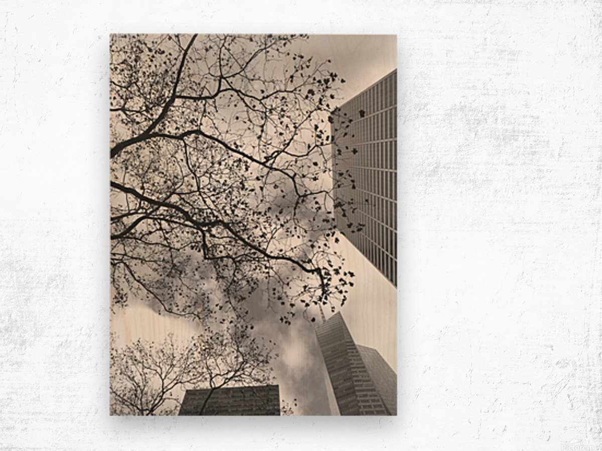 NYC Placement Wood print