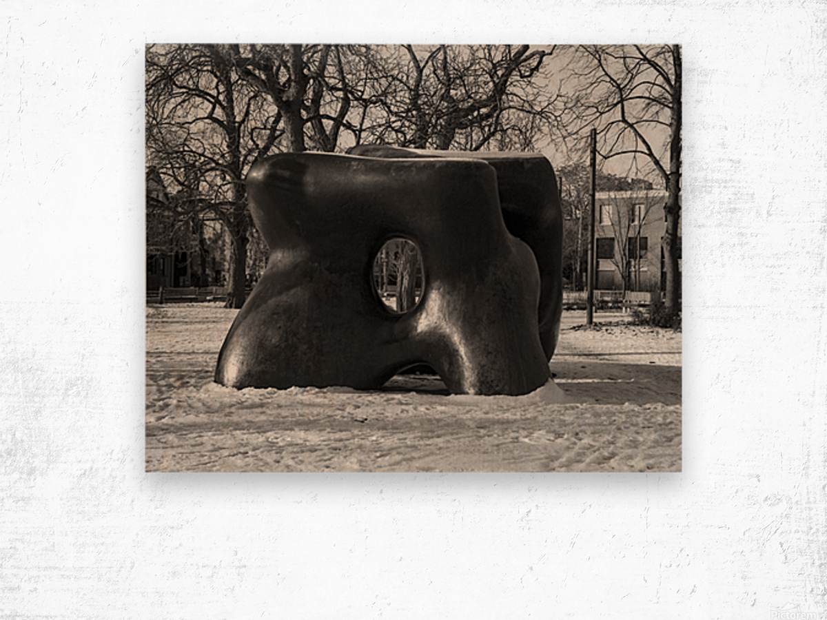 Two Large Forms at Grange Park 1 Wood print