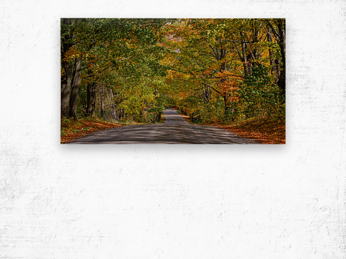 Fall Colors over a Country Road Wood print
