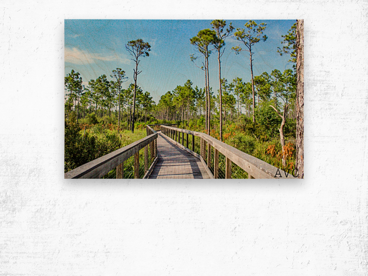 Bridge Walk Wood print