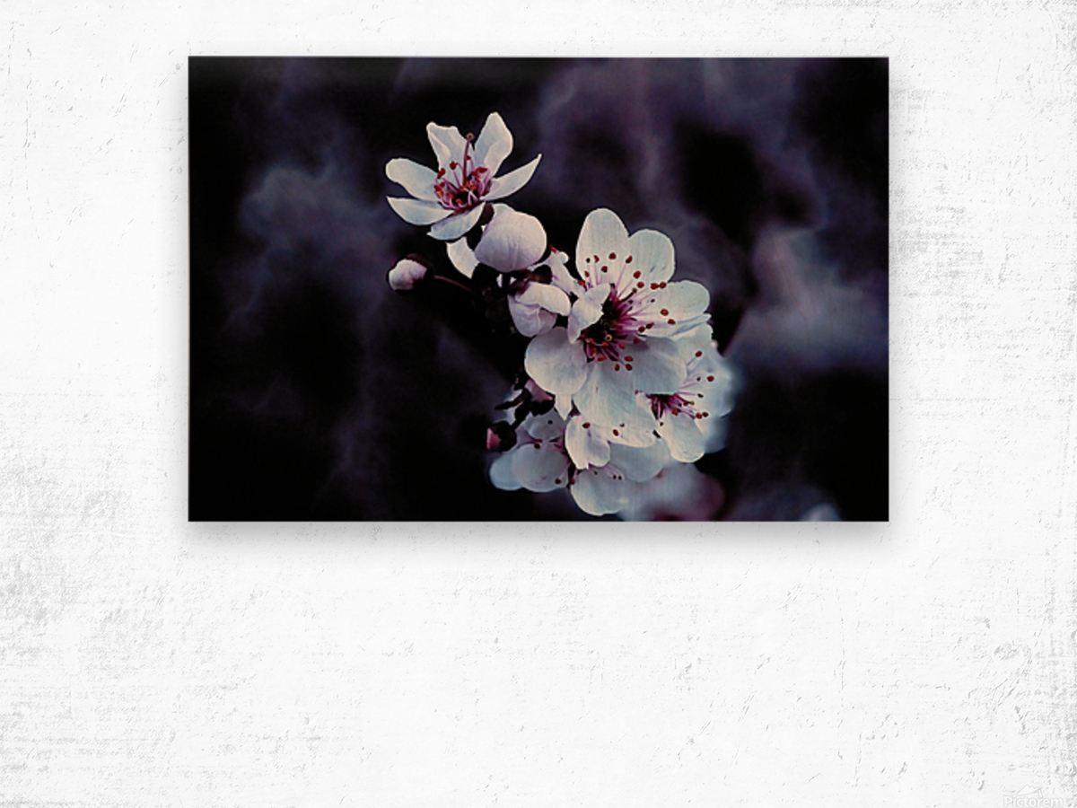 Night Flowers Wood print