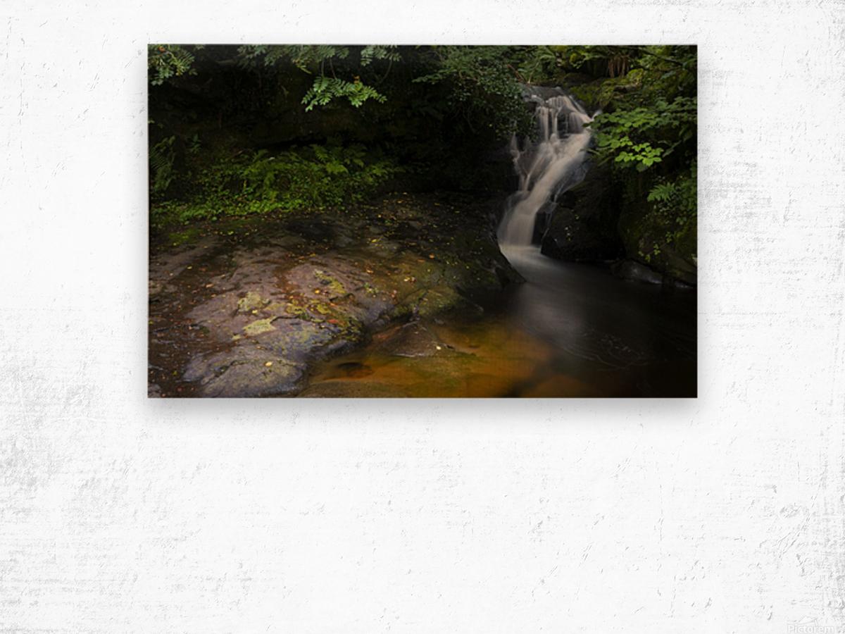 The colours of Blaen y Glyn  Wood print