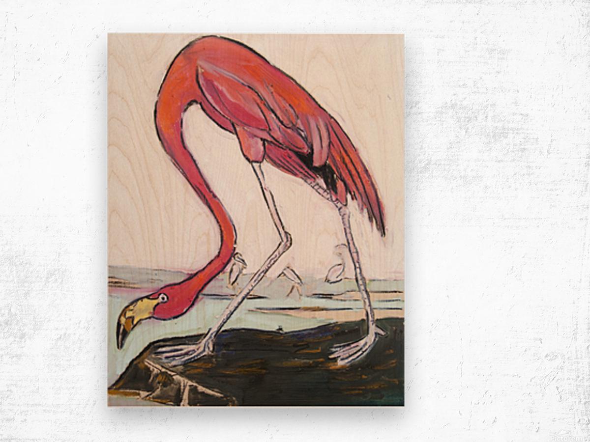 Louisiana Flamingo Study on Wood Wood print