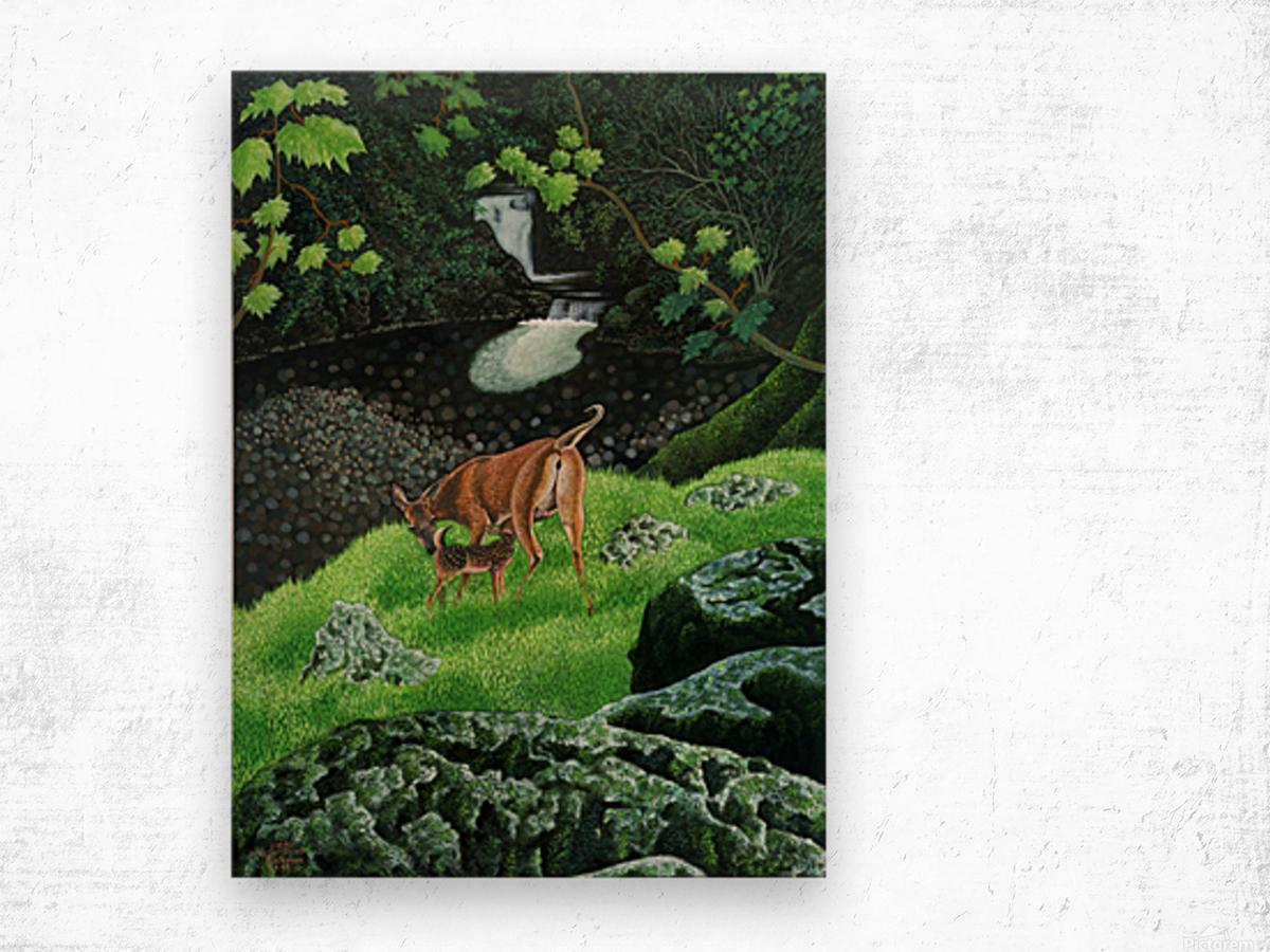 1991 06 Wood print