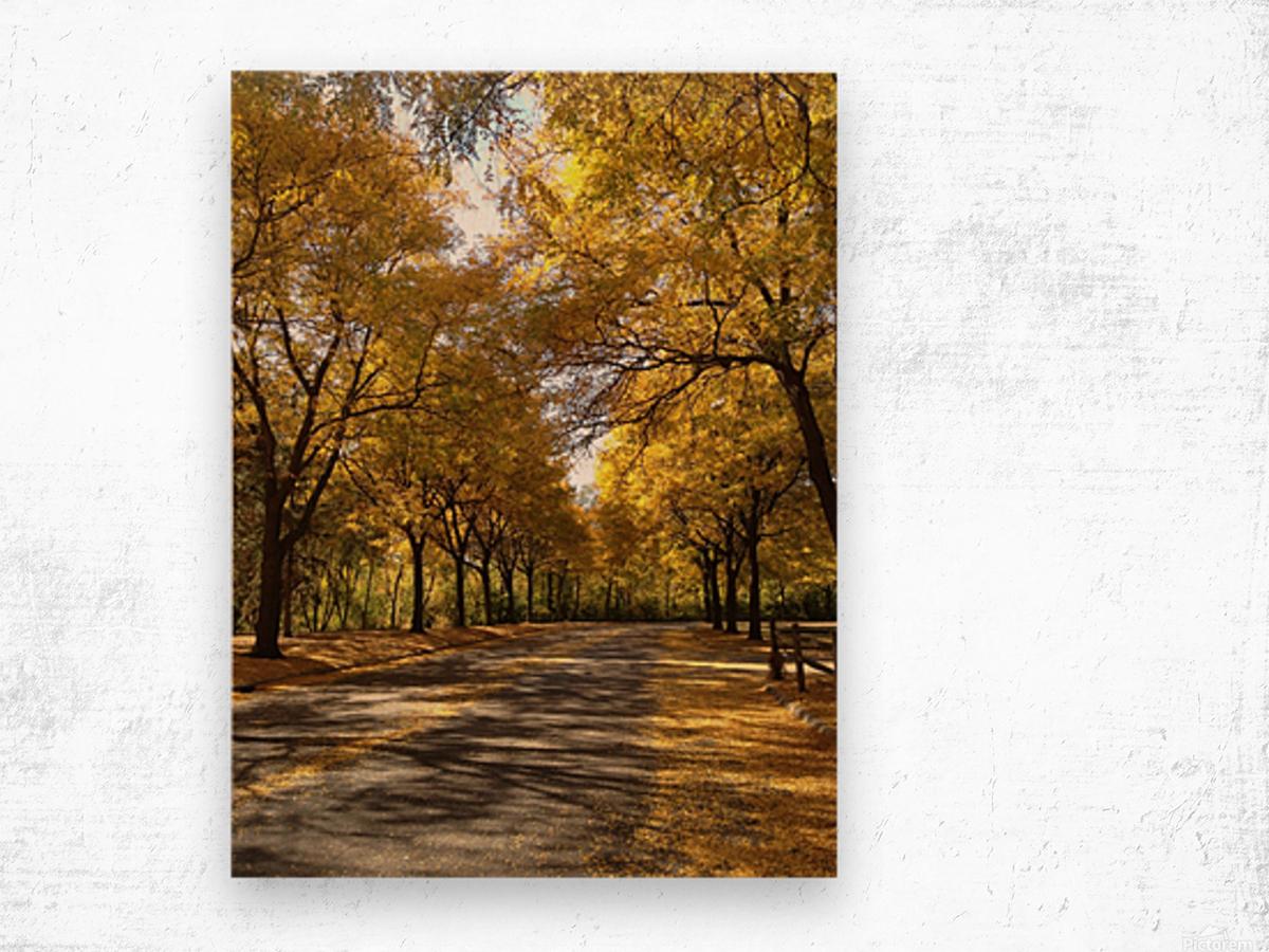 Autumn on Olivers End Wood print