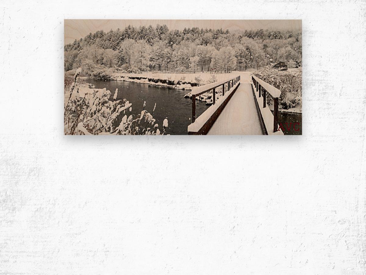 Rugby Pitch Bridge- Winter Wood print