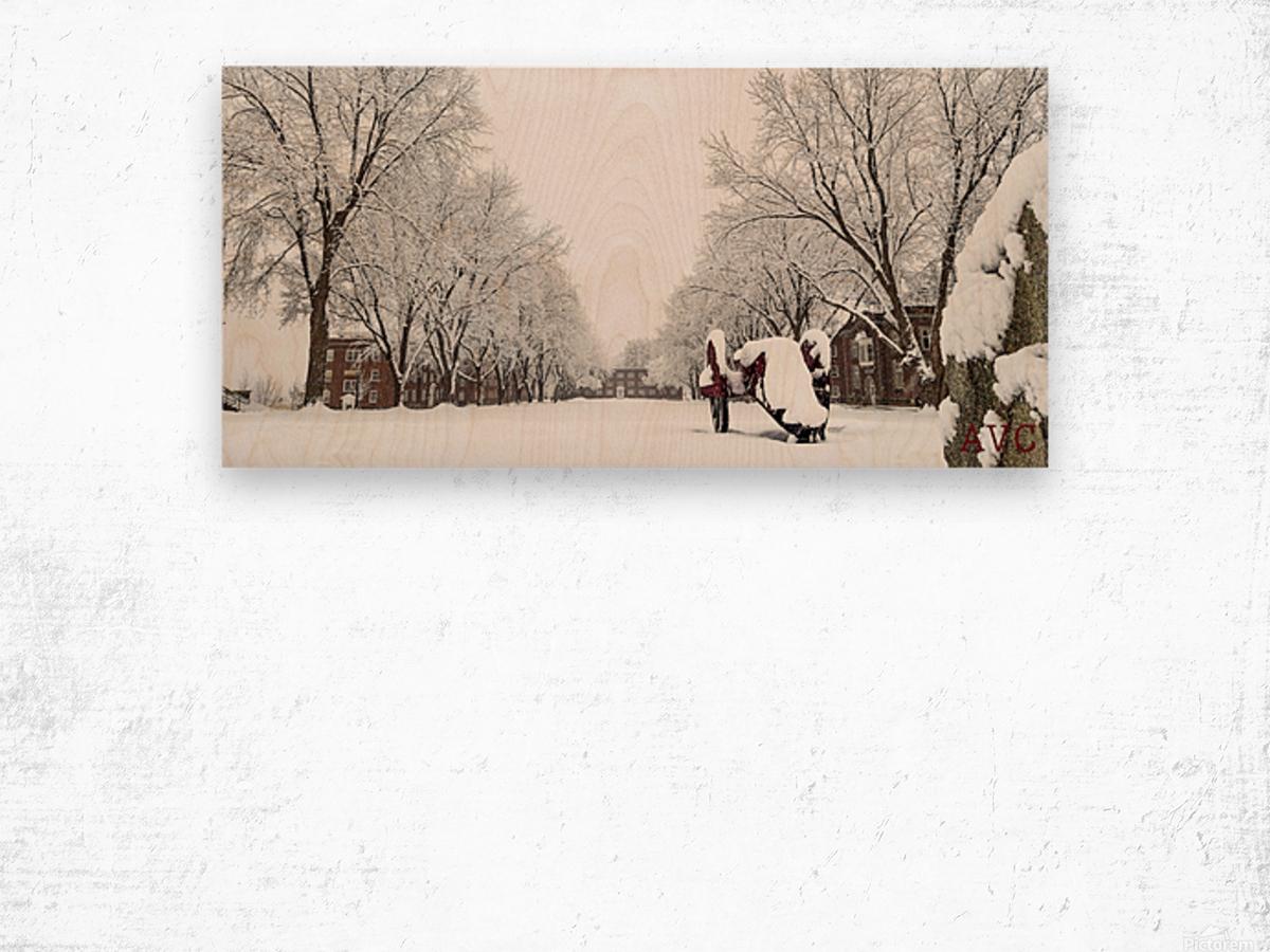 Parade Ground-- Winter Wood print