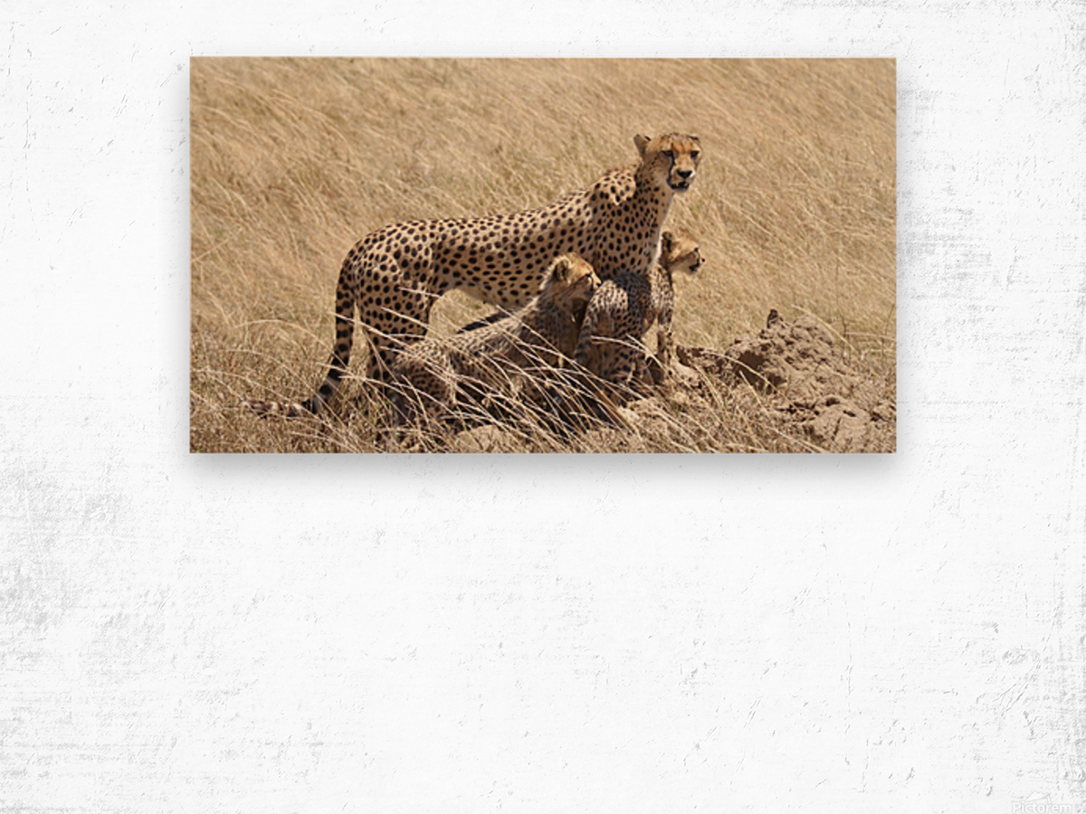 Mama Cheetah Wood print