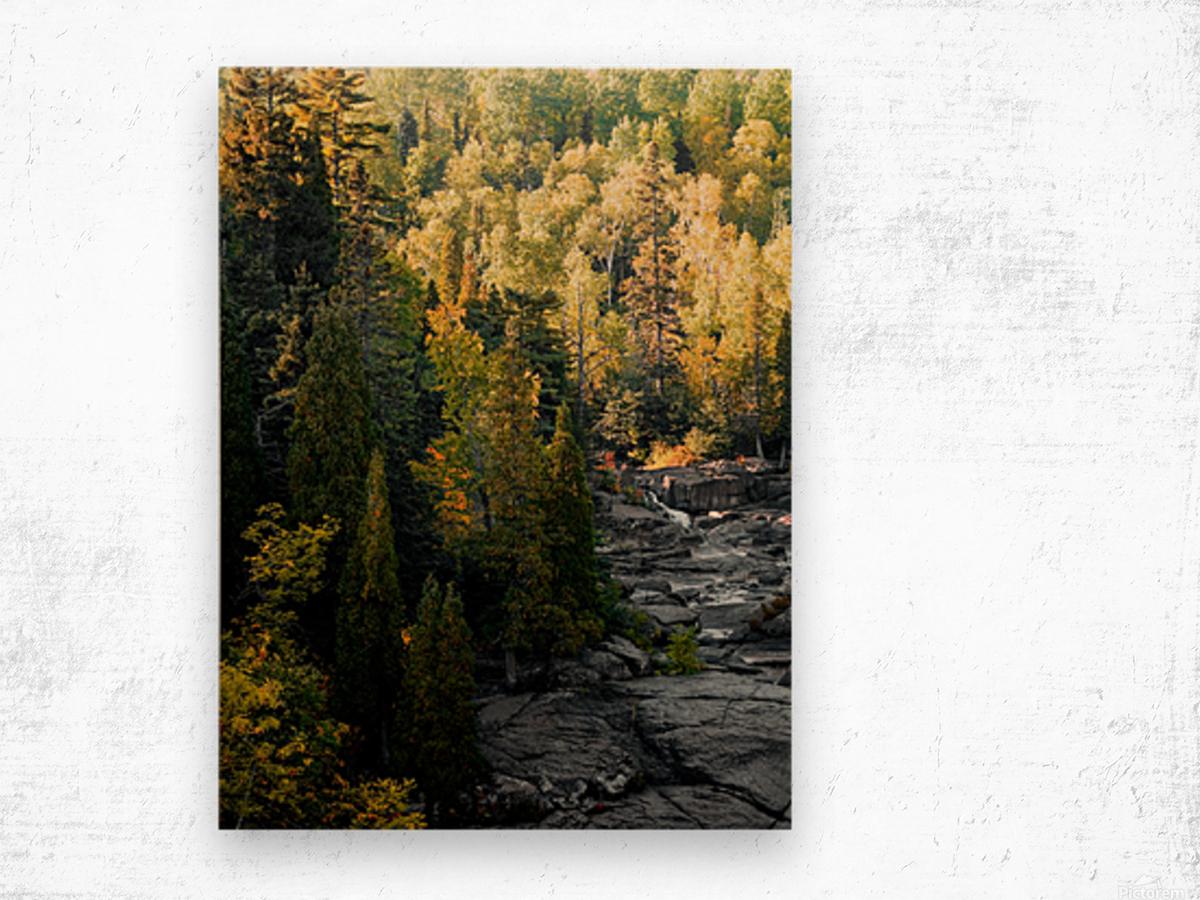 P9220119 Wood print