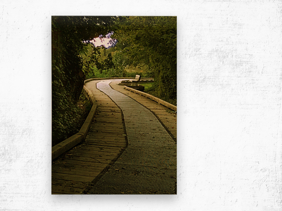 Boardwalk stroll Wood print