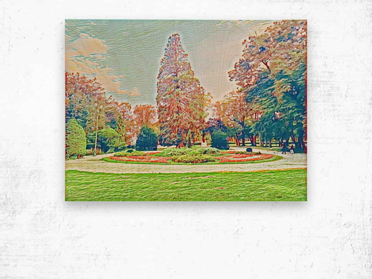 Garden Childhood Wood print