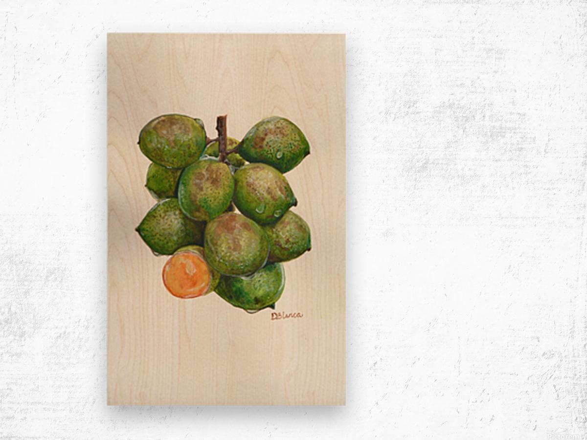 Spanish Lime Wood print